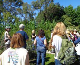 Salida educativa de los alumnos de Jardinería – Diseño